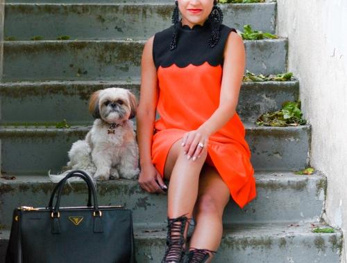 Drop Waist Dress – Victoria Beckham for Target